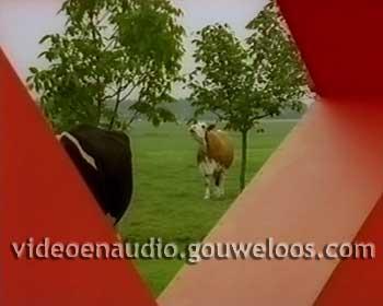 Nederland 1 - Koeien in Logo Leader (2003).jpg