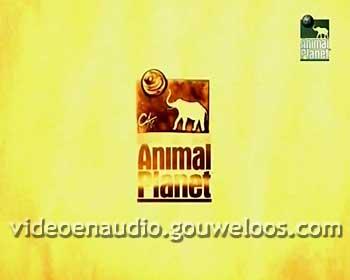 Animal Planet - Leader (01) (2006).jpg