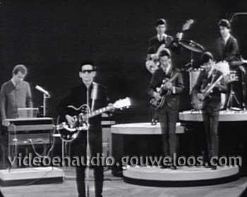 Combo (19650424) - Roy Orbison 02.jpg